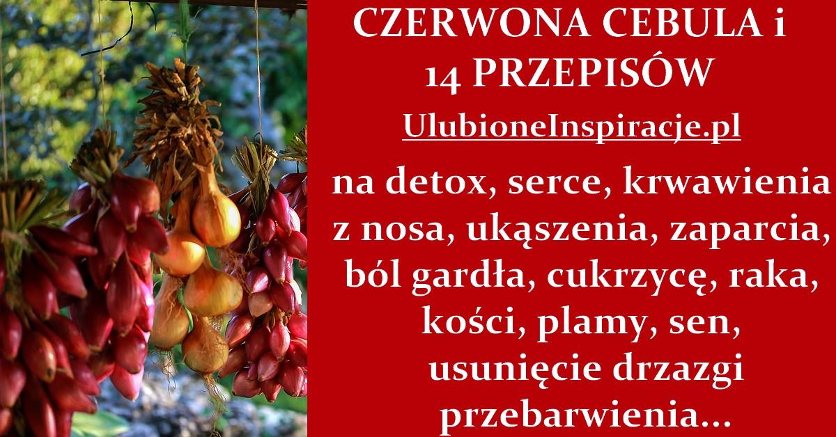 UlubioneInspiracje.pl-czerwona-cebula